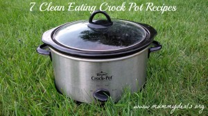Clean eating crock pot recipes