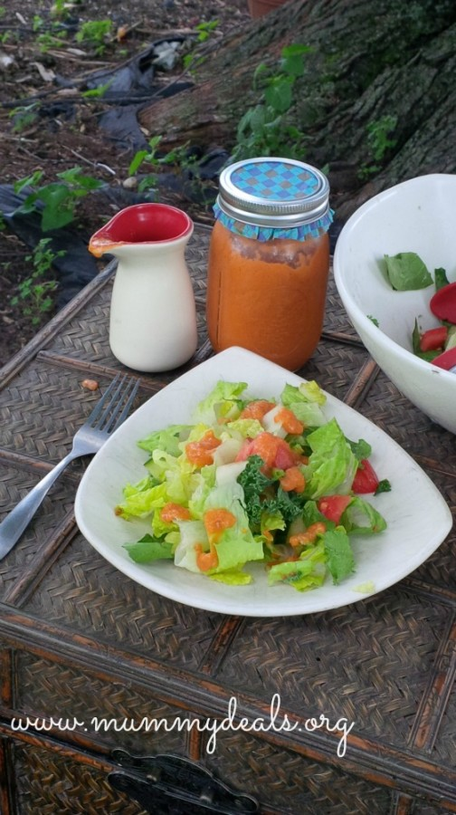 Homemade Sweet Onion Salad Dressing