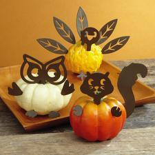 Autumn Mini Pumpkin Decorations $6.99 (Reg. $9.99)