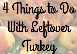 4 Things to Do With Leftover Turkey - Mummydeals.org