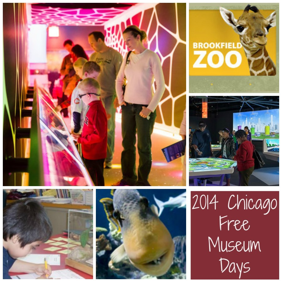 2014 Chicago Free Museum Days Collage