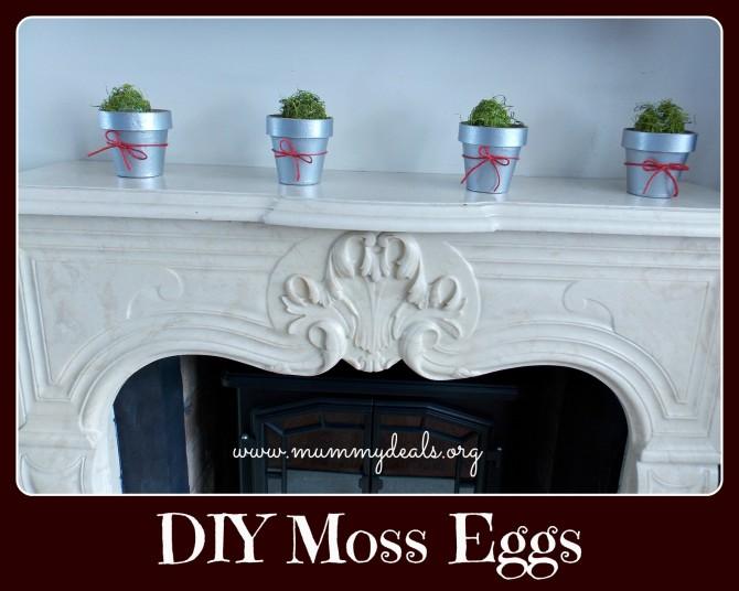 DIY Moss Eggs 5