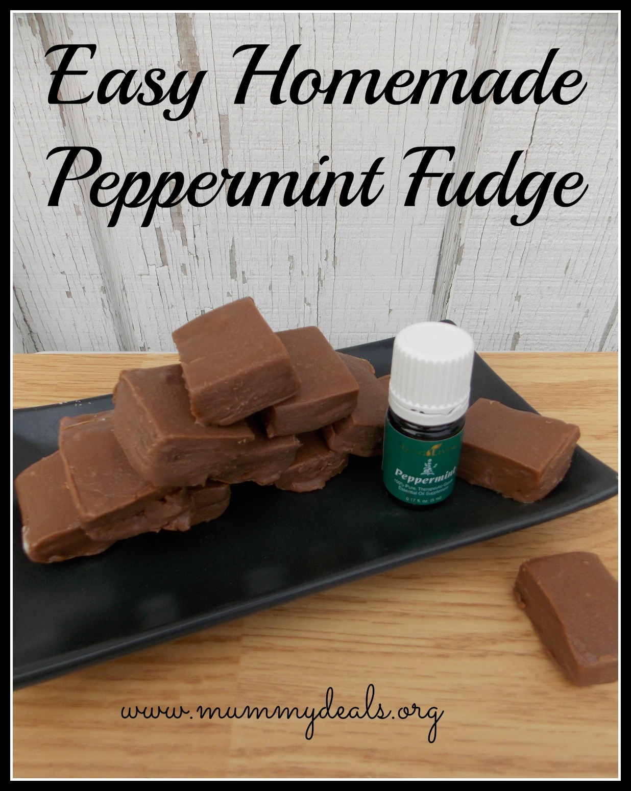 Easy Homemade Peppermint Fudge Recipe