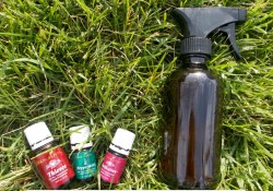 Homemade Bug Spray Recipe