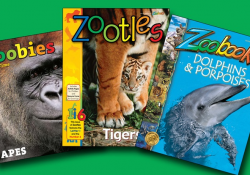 Zoo Books Discount Deal