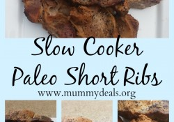 Slow Cooker Paleo Short Ribs