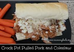 Crock Pot Pulled Pork and Coleslaw