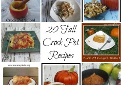 Fall is in the air and I like my crock pot to do all the cooking work. Snag these 20 Fall Crock Pot Recipes. - Mummy Deals
