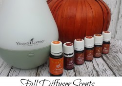 The fall brings some of my favorite smells and flavors, and these Fall Diffuser Scents are perfect for making your home smell amazing. - MummyDeals.org