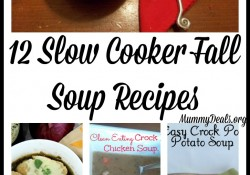 We are giving up the days of fresh fruit and veggies and swapping them for veggie filled soups. Try one of these 12 Fall Slow Cooker Soup Recipes for an easy & warm meal. - Mummy Deals