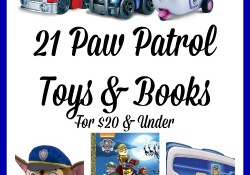 I'm stocking up early as these 21 Paw Patrol Toys & Books For $20 & Under are sure to be a hit with many!