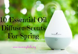 10 Essential Oil Diffuser Scents For Spring